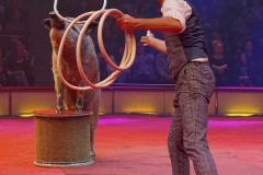 Circus-Krone-Hereinspaziert-Manege-frei-Premiere-031