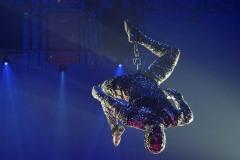Cirque-du-Soleil-Totem-009