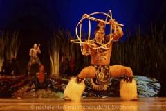 Cirque-du-Soleil-Totem-020