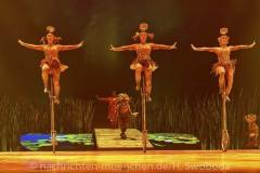 Cirque-du-Soleil-Totem-055