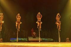 Cirque-du-Soleil-Totem-056