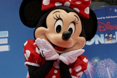 Disney on Ice - PT 0240