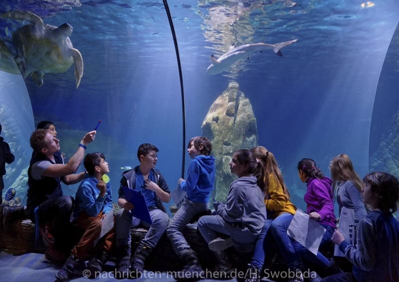 Sea Life - Fischinventur 0420