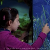 Sea Life - Fischinventur 0170