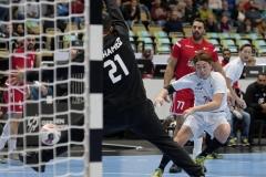 Handball-WM-Bahrain-Japan 0090