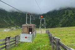 Hellabrunner-Alpensteinboecke-erfolgreich-ausgewildert-12-von-12