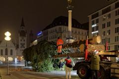 Der-Muenchner-Christbaum-2020-1-von-27