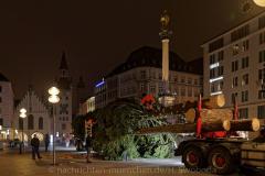 Der-Muenchner-Christbaum-2020-4-von-27