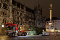 Der-Muenchner-Christbaum-2020-6-von-27