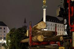 Der-Muenchner-Christbaum-2020-7-von-27