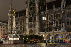 Der-Muenchner-Christbaum-2020-8-von-27