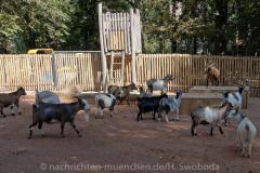 Tierpark Hellabrunn - Presse-Rundgang