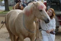 Pferd-International-Welcome-Abend-0110