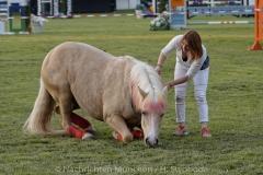 Pferd-International-Welcome-Abend-0140