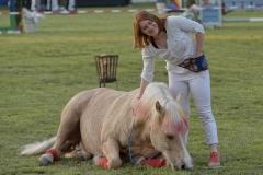 Pferd-International-Welcome-Abend-0150