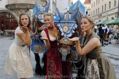Vorstellung-PLAYBOY-Wiesn-Playmate-2020-im-Hofbraeuhaus-am-Platzl-24