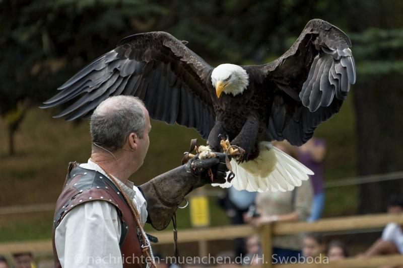 Pressereise - Birmingham - Warwick Castle 0520