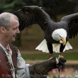Pressereise - Birmingham - Warwick Castle 0450