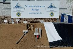 Wirtschaftsminister-Hubert-Aiwanger-sticht-ersten-Spargel-in-Schrobenhausen-7-von-44