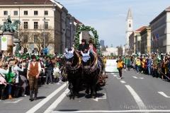 St. Patrick's Day 2019 (60 von 206)