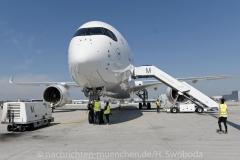 Flugzeuge-am-Flughafen-MUC-0470