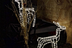 Schloss Kaltenberg Weihnachtsmarkt 0360