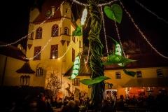Weihnachtsmarkt auf Schoss Kaltenberg (31 von 48)