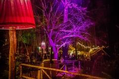Weihnachtsmarkt auf Schoss Kaltenberg (34 von 48)
