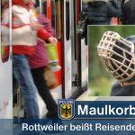 In den Arm gebissen - Echingerin in S-Bahn durch Rottweiler verletzt