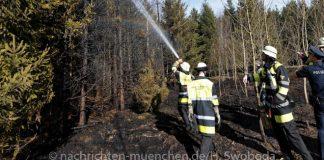 Waldbrand im Stadtteil Ramersdorf-Perlach
