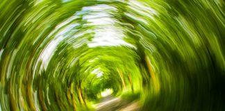 Schwindel: Wenn sich alles dreht – Symptome erkennen, verstehen und richtig behandeln