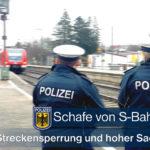Schafe von S-Bahn erfasst - Schienenersatzverkehr und 10.000 Euro Schaden