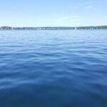 Starnberger See Schwimmen