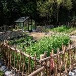 Gartenfest im Hellabrunner Bauerngarten