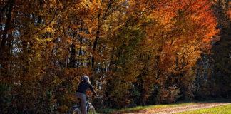 ADFC-Tipps: Sicher radeln durch Herbst und Winter