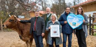 UNSER LAND übernimmt Patenschaft für Murnau-Werdenfelser-Rinder im Hellabrunner Mühlendorf