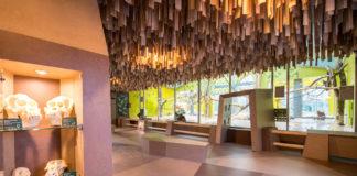 Wiedereröffnung des Orang-Utan- und Drill-Hauses im neuen Gewand