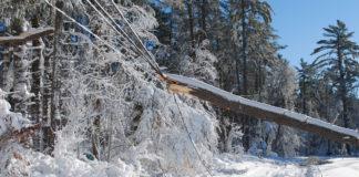 Vom Schneeflöckchen zum Schwergewicht - So schwer ist Schnee