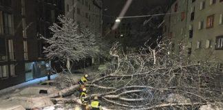 Bislang 120 Einsätze nach Schneefällen in München