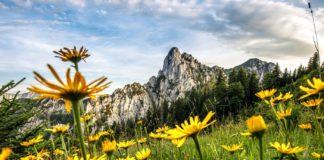 Märchen-Sommer für Familien in Ruhpolding