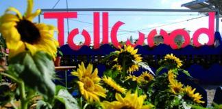 Tollwood Sommerfestival 2019: Der Sommer kann kommen - Das Line-up der großen Tolllwood-Bühne ist komplett!