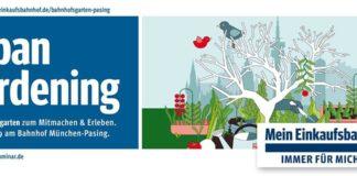 Urban Gardening 2019