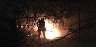 Flächenbrand in Freimann