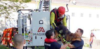 Hund aus reißender Isar gerettet