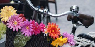 Radeln in allen Lebenslagen: Kurs für SeniorInnen im Westpark