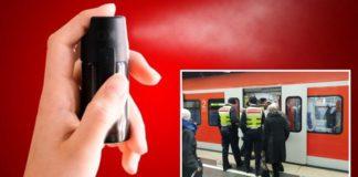 Bahnsicherheitsmitarbeiter attackiert
