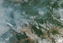 Rauch verhüllt halben Kontinent - Südamerikas Wälder brennen
