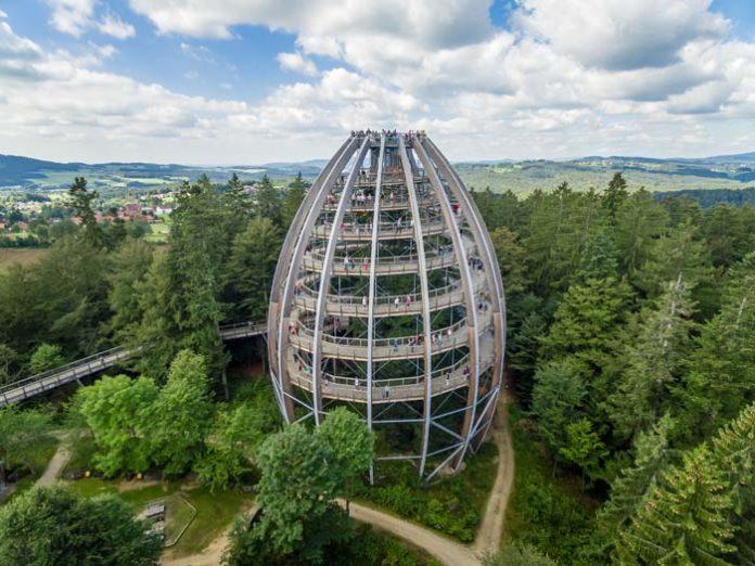 10 Jahre Baumwipfelpfad Bayerischer Wald: Das Baum-Ei feiert Geburtstag