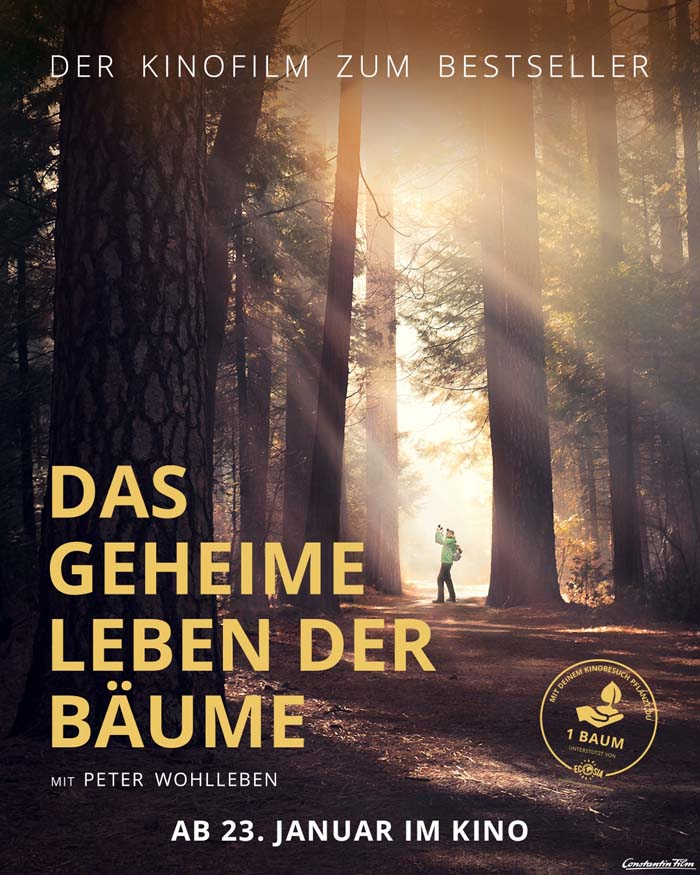 Das Geheime Leben Der Bäume Kino Hamburg