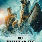 Ruf der Wildnis - Kinostart: 20.02.2020